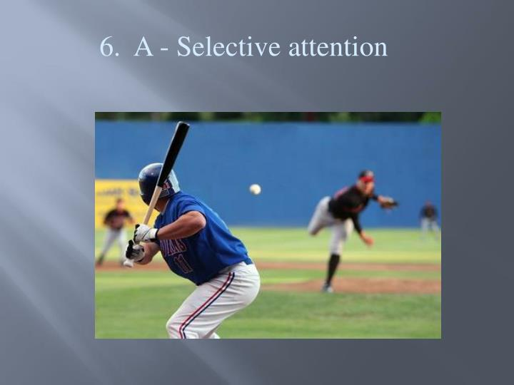6.  A - Selective attention