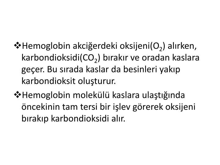 Hemoglobin akciğerdeki oksijeni(O