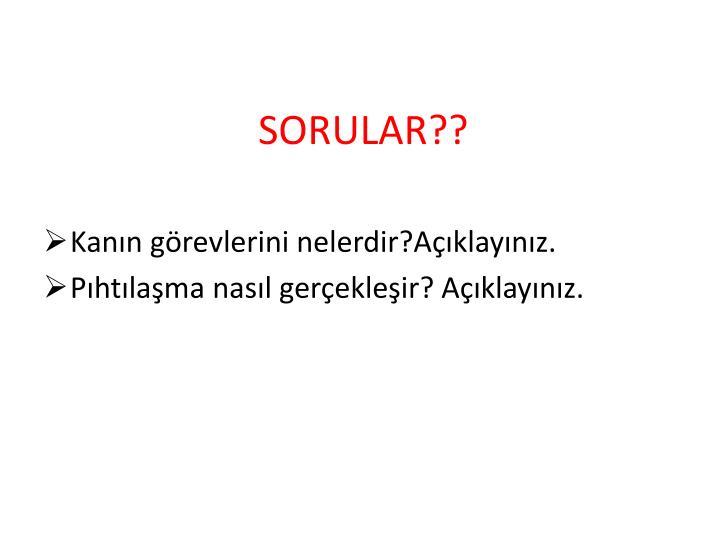 SORULAR??