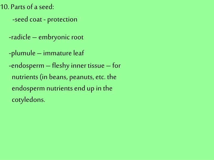 10. Parts of a seed: