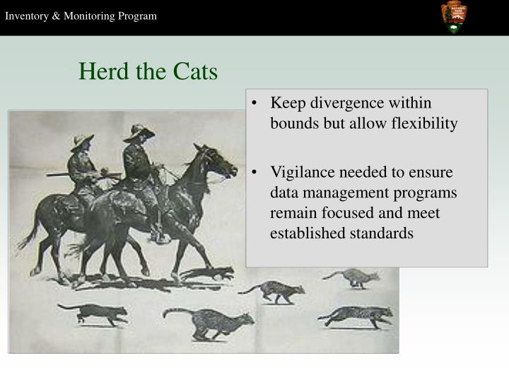 Herd the Cats
