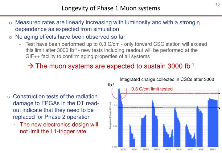 Longevity of Phase 1 Muon systems