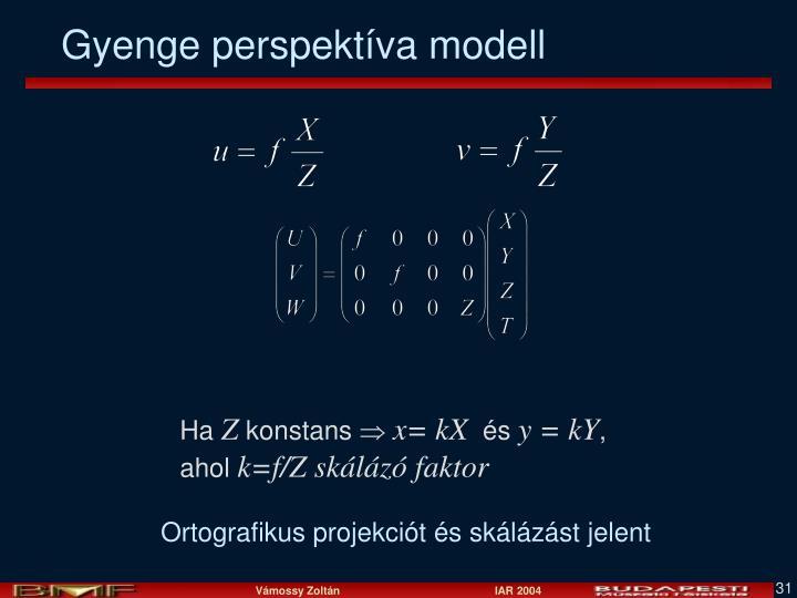 Gyenge perspektíva modell
