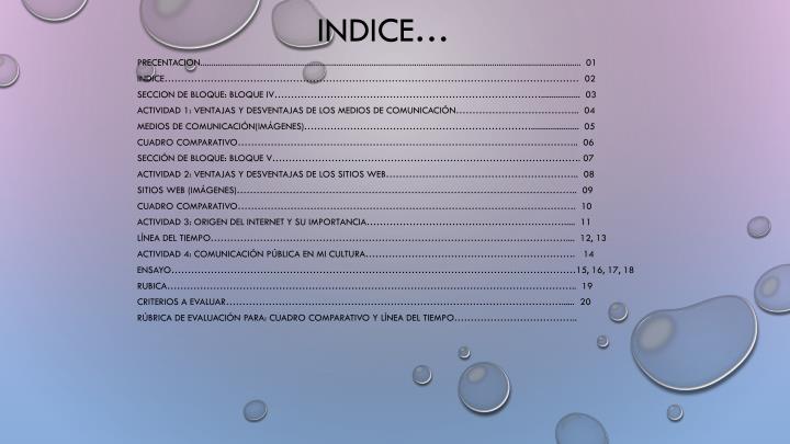 INDICE…