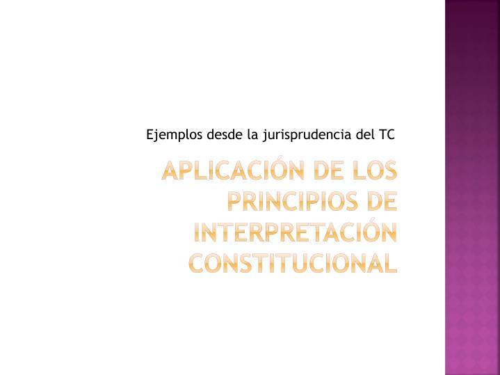 Ejemplos desde la jurisprudencia del TC