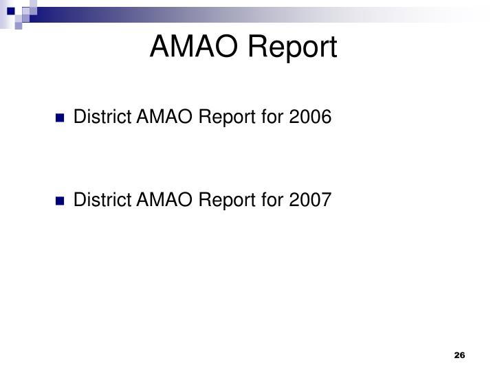 AMAO Report