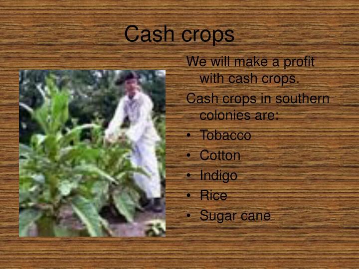 Cash crops
