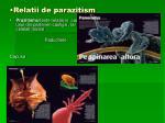 relatii de parazitism