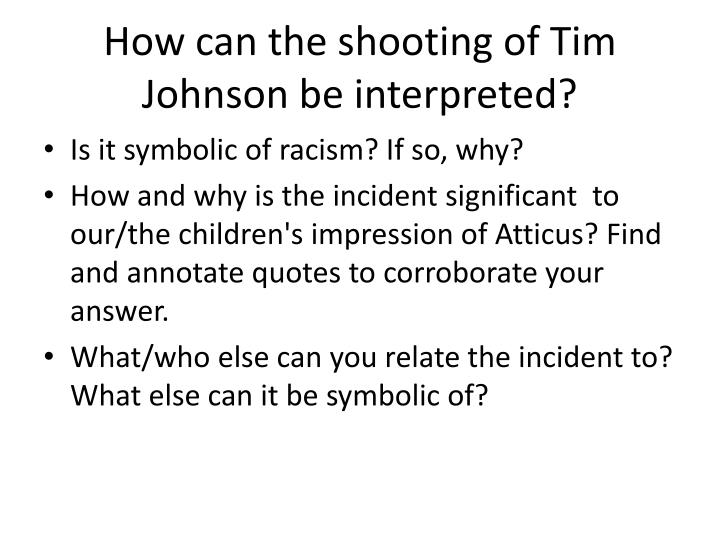 How can the shooting of Tim Johnson be interpreted?