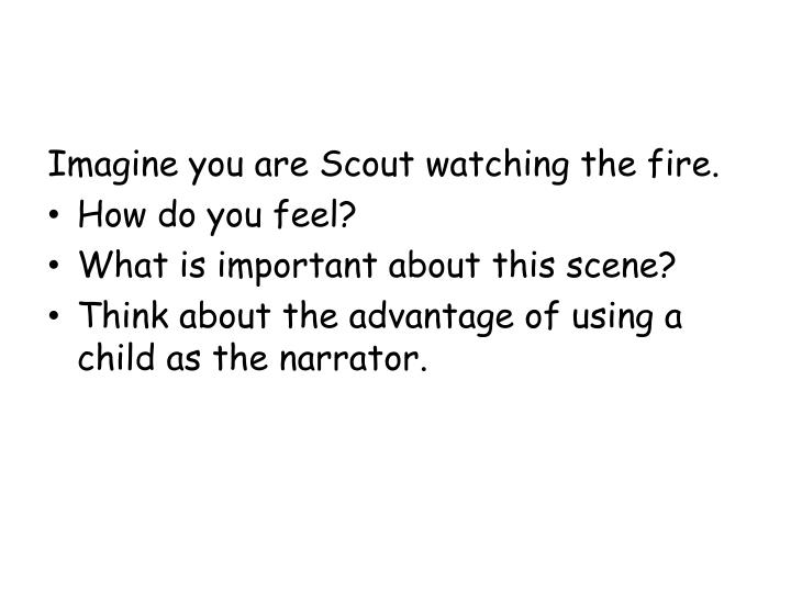 Imagine you are Scout watching the fire.