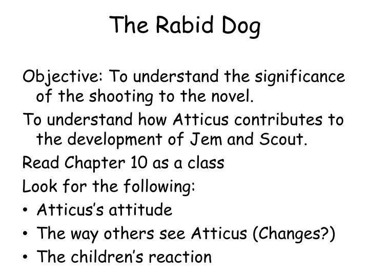 The Rabid Dog