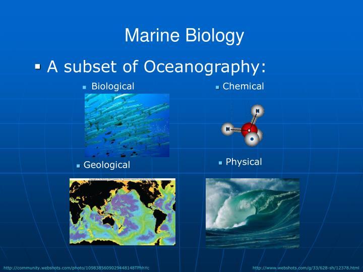 Marine Biology