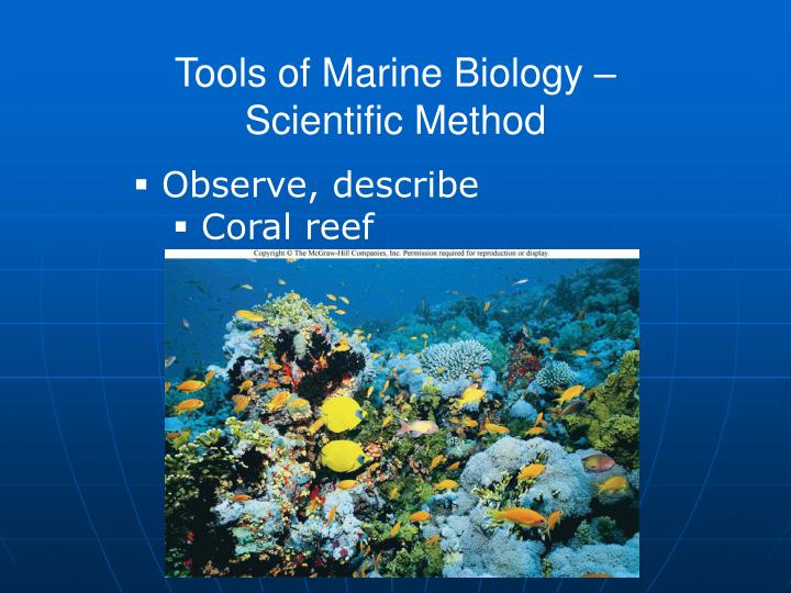 Tools of Marine Biology –