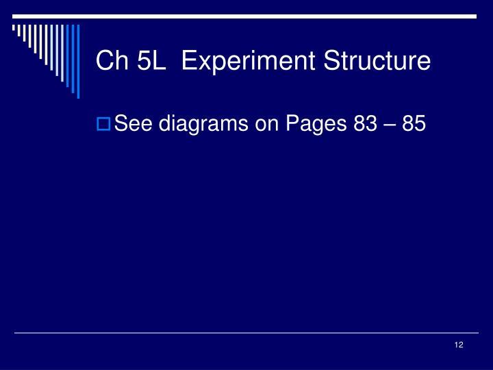 Ch 5L  Experiment Structure