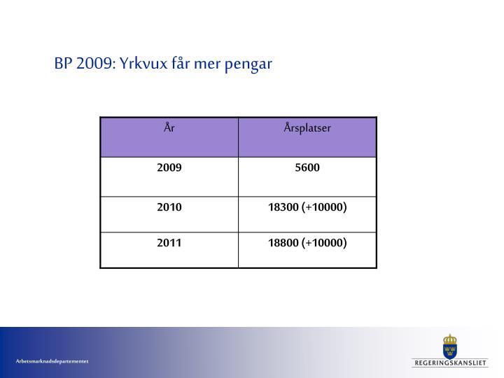 BP 2009: Yrkvux får mer pengar