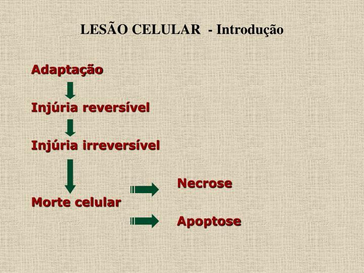 LESÃO CELULAR  - Introdução