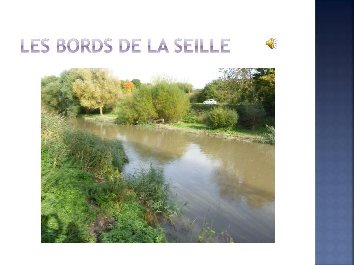 Les bords de la Seille