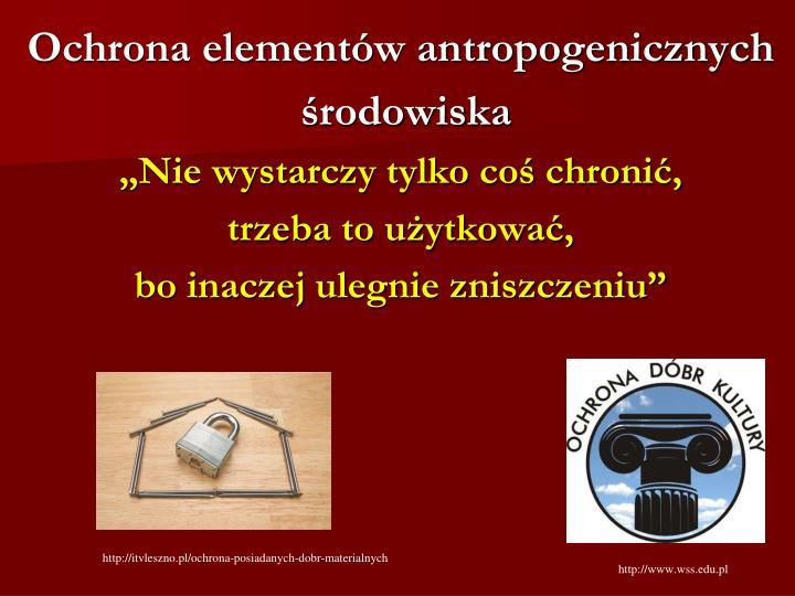 Ochrona elementów antropogenicznych