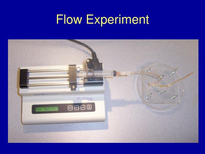 Flow Experiment