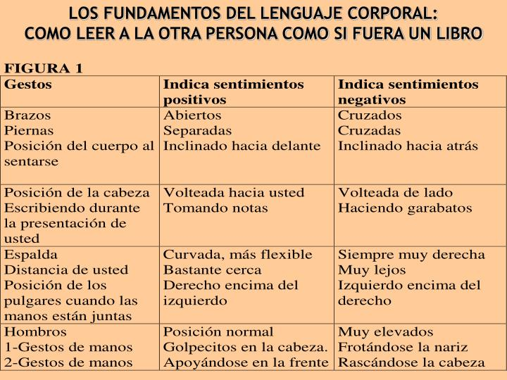 LOS FUNDAMENTOS DEL LENGUAJE CORPORAL: