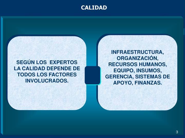 INFRAESTRUCTURA, ORGANIZACIÓN, RECURSOS HUMANOS, EQUIPO, INSUMOS, GERENCIA, SISTEMAS DE APOYO, FINANZAS.