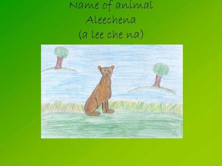 Name of animal