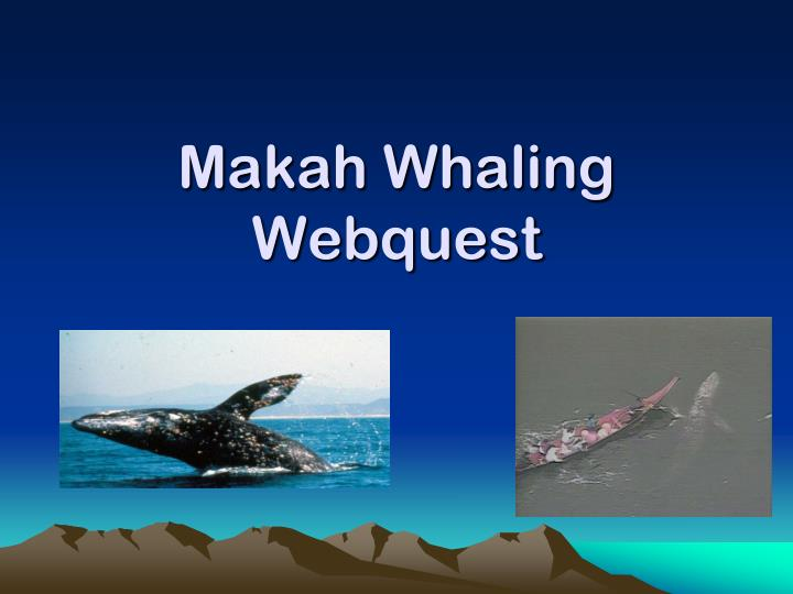 makah and whaling Neah bay, wash – a group of canoe paddlers planned saturday to mark the 15-year anniversary of the makah tribe's last legal hunt for a gray whale wayne johnson said the makah whaling commission organized the paddle to mark may 17, 1999, when the tribe killed its first whale in decades, the peninsula daily news reported.