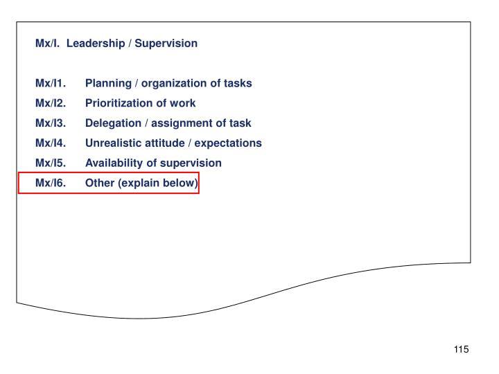 Mx/I.  Leadership / Supervision