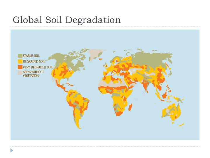 Global Soil Degradation