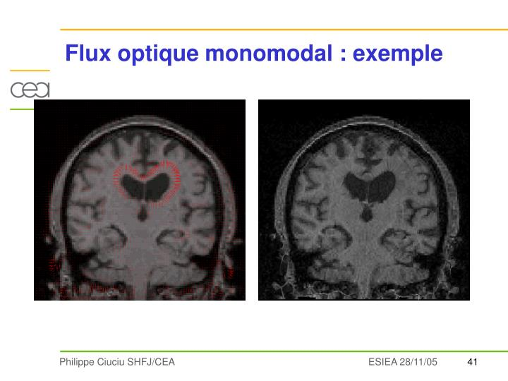 Flux optique monomodal : exemple