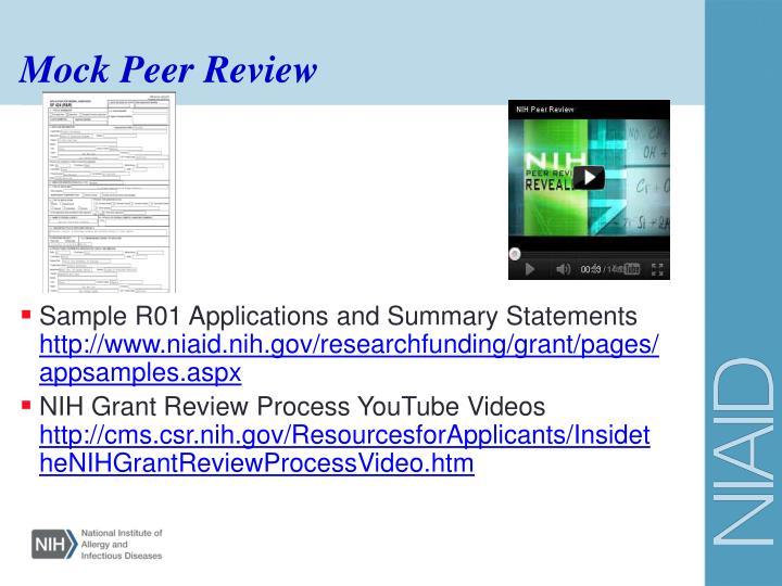 Mock Peer Review