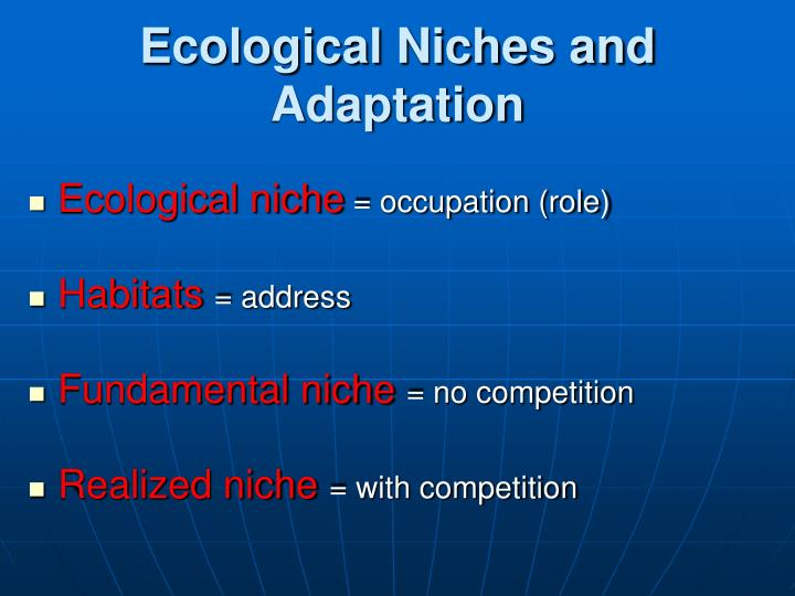 Ecological Niches and Adaptation