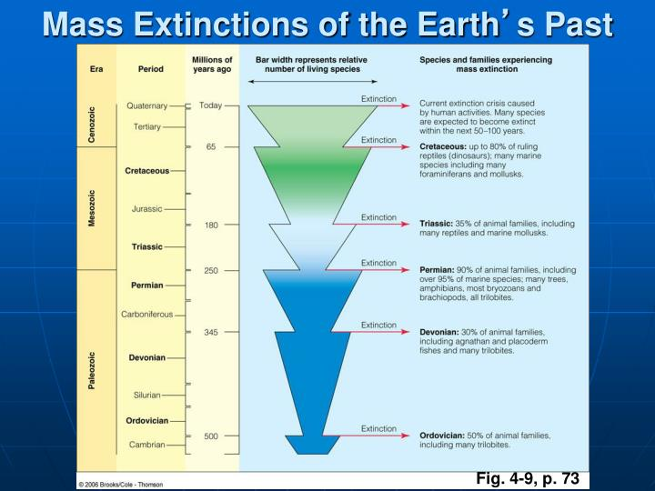 Mass Extinctions of the Earth
