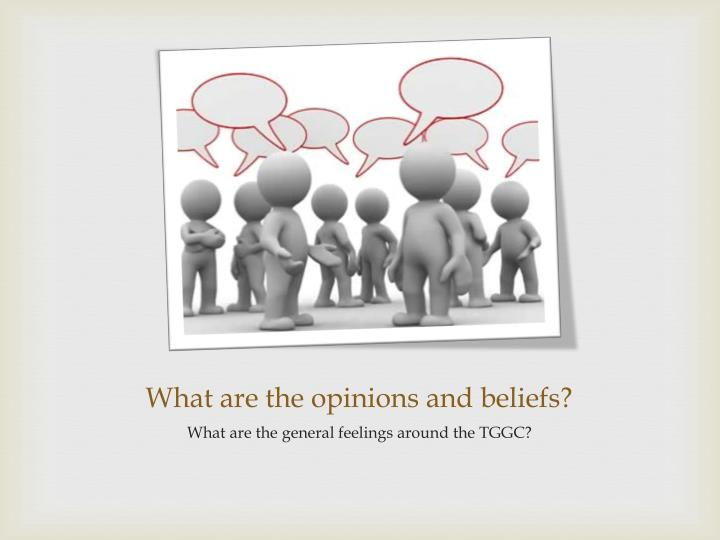 What are the opinions and beliefs?