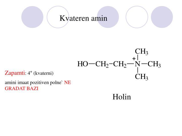 Kvateren amin