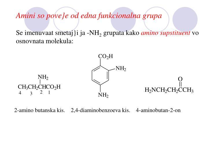 Amini so pove}e od edna funkcionalna grupa