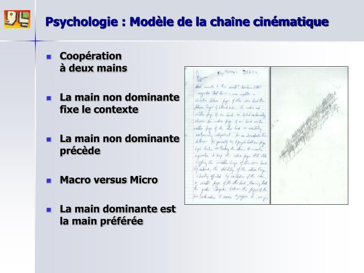Psychologie : Modèle de la cha