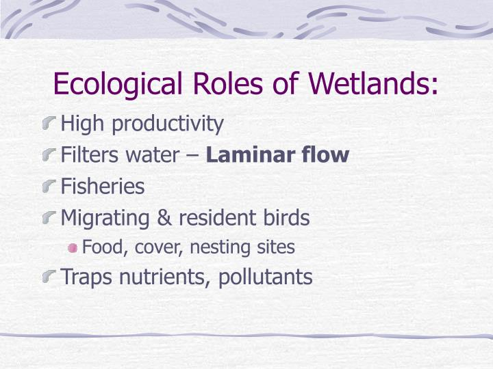 Ecological Roles of Wetlands: