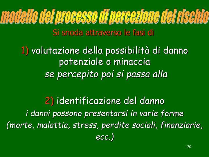 modello del processo di percezione del rischio