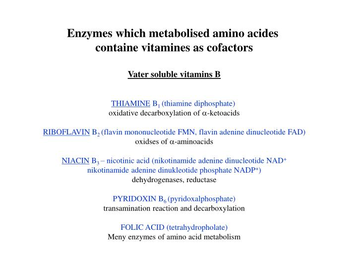 Enzymes which metabolised amino acides