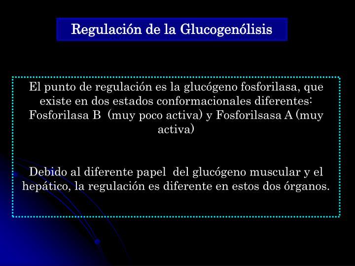 Regulación de la Glucogenólisis