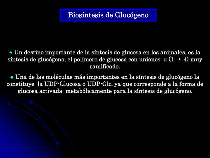 Biosíntesis de Glucógeno