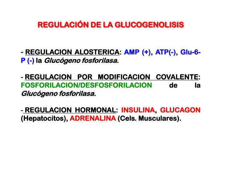 REGULACIÓN DE LA GLUCOGENOLISIS