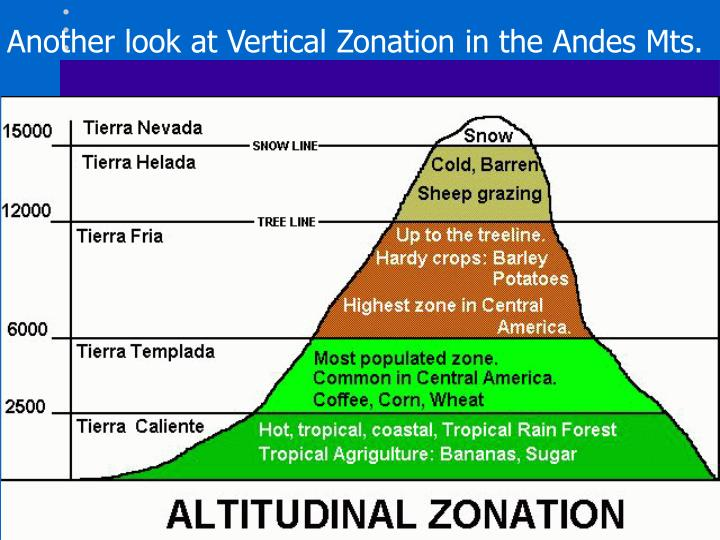 Another look at Vertical Zonation in the Andes Mts.