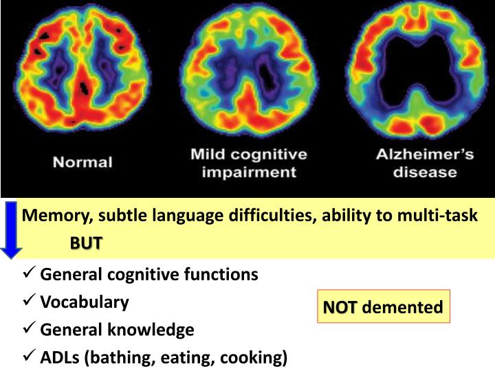 General cognitive functions