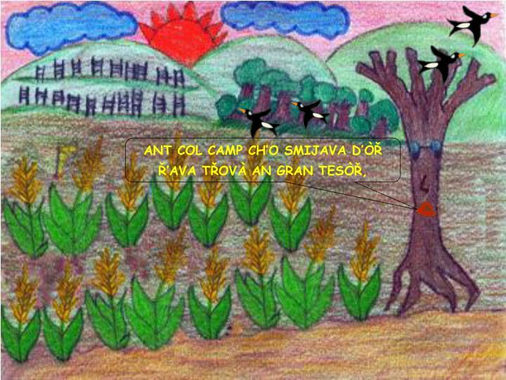 ANT COL CAMP CH'O SMIJAVA D'