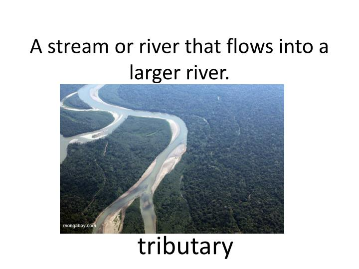 A stream or river that flows into a larger river.