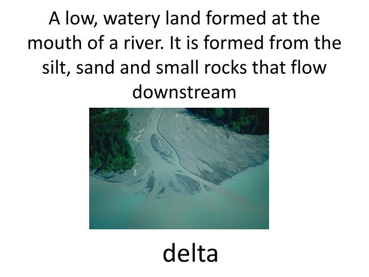 A low, watery land formed at the mouth of a river. It is formed from the silt, sand and small rocks that flow downstream
