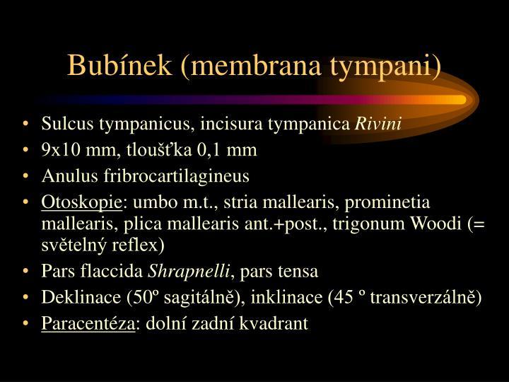 Bubínek (membrana tympani)