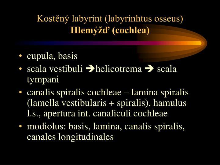 Kostěný labyrint (labyrinhtus osseus)